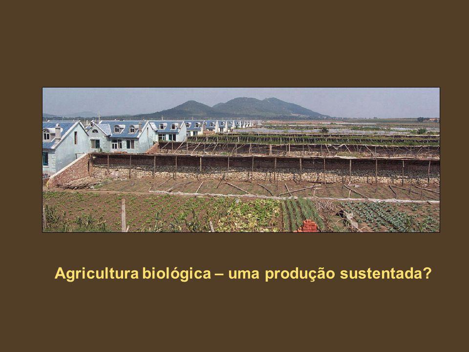 Agricultura biológica – uma produção sustentada