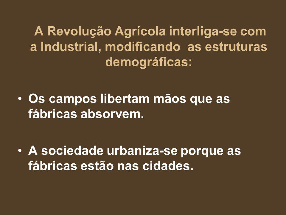 A Revolução Agrícola interliga-se com a Industrial, modificando as estruturas demográficas: