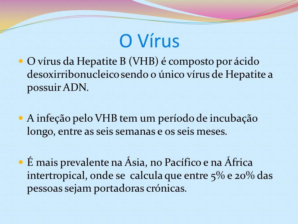 O Vírus O vírus da Hepatite B (VHB) é composto por ácido desoxirribonucleico sendo o único vírus de Hepatite a possuir ADN.