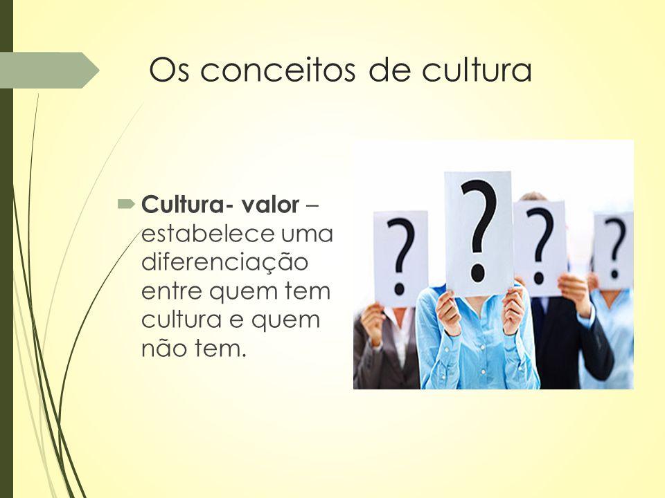 Os conceitos de cultura