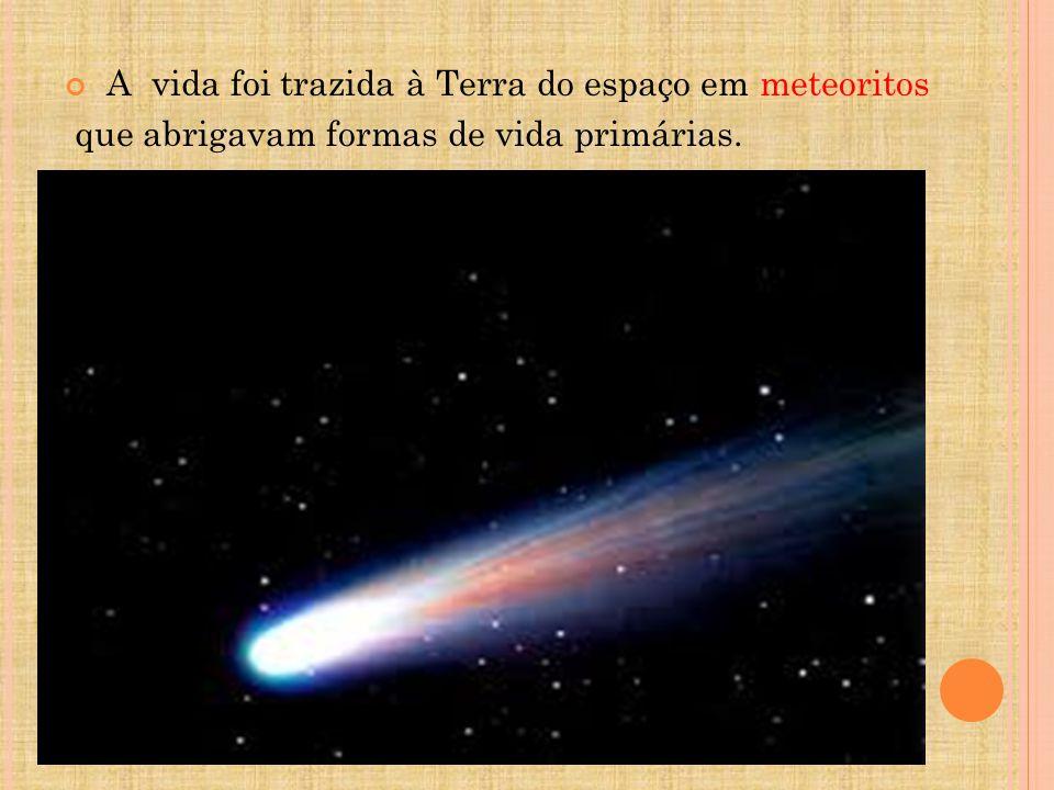 A vida foi trazida à Terra do espaço em meteoritos