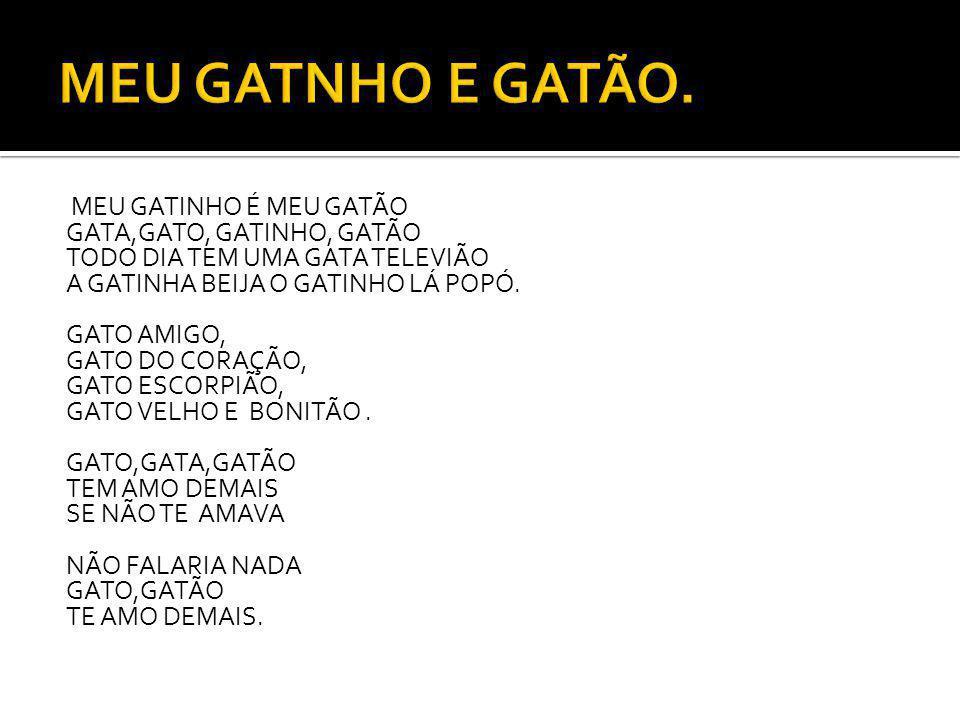 MEU GATNHO E GATÃO.