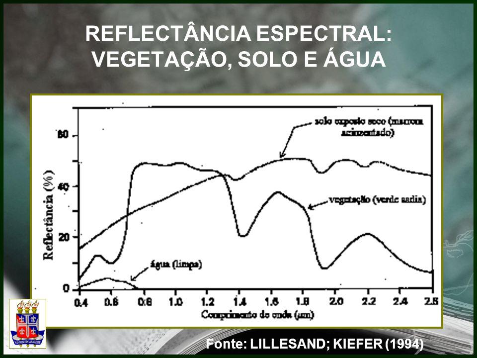 REFLECTÂNCIA ESPECTRAL: VEGETAÇÃO, SOLO E ÁGUA