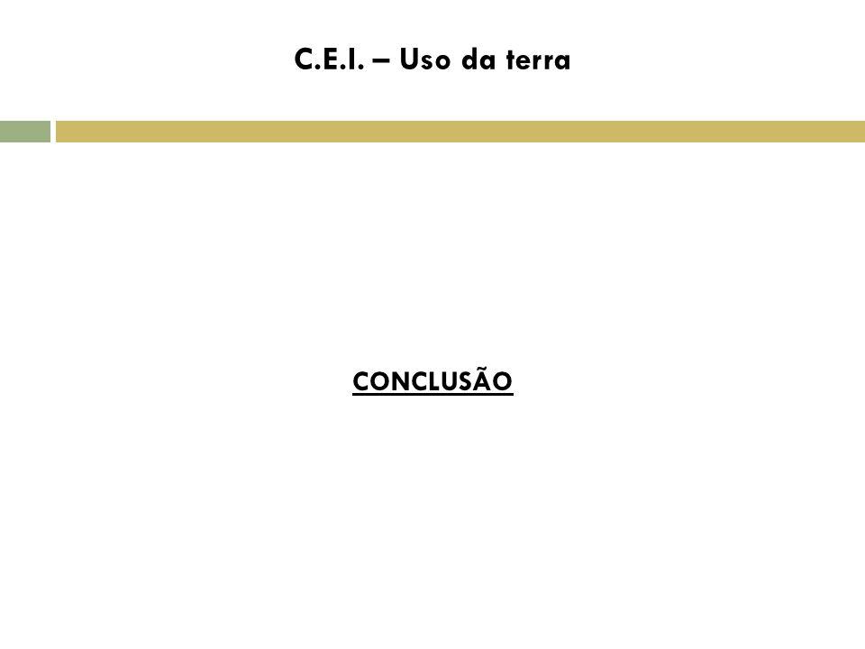 C.E.I. – Uso da terra C CONCLUSÃO