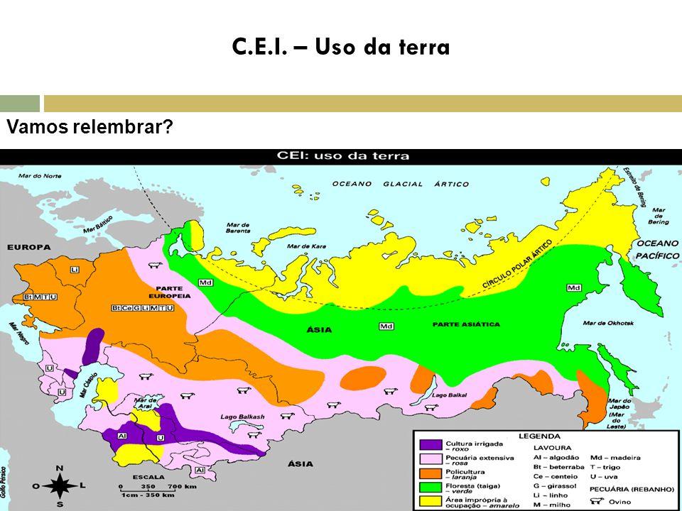 C.E.I. – Uso da terra Vamos relembrar