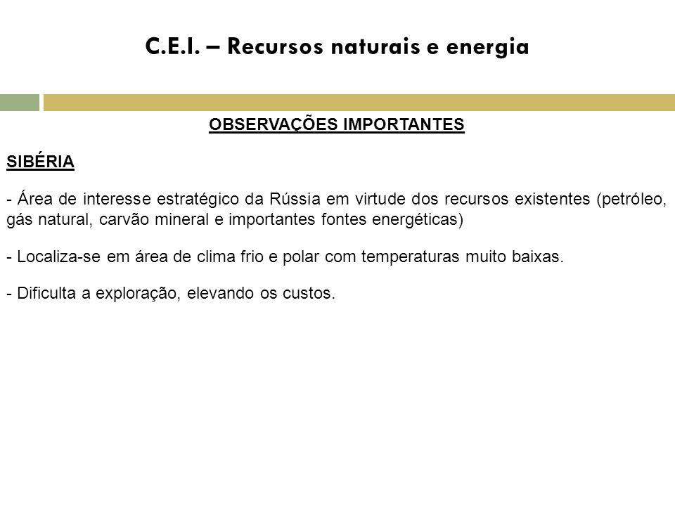 C.E.I. – Recursos naturais e energia OBSERVAÇÕES IMPORTANTES