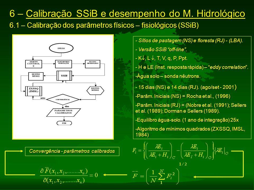 Convergência - parâmetros calibrados