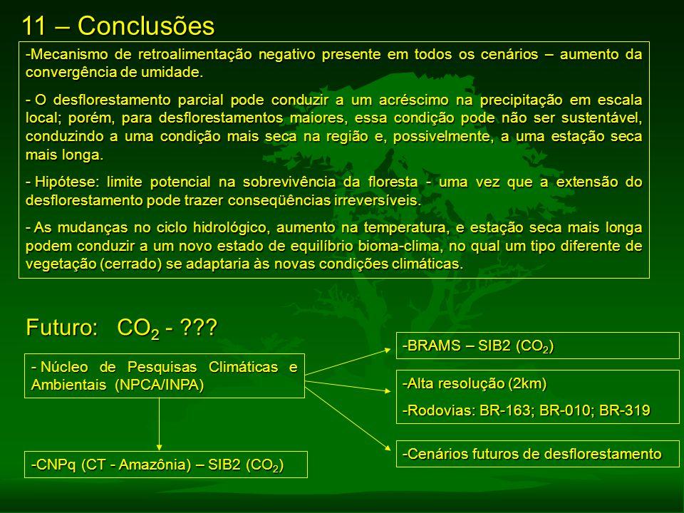 11 – Conclusões Futuro: CO2 -
