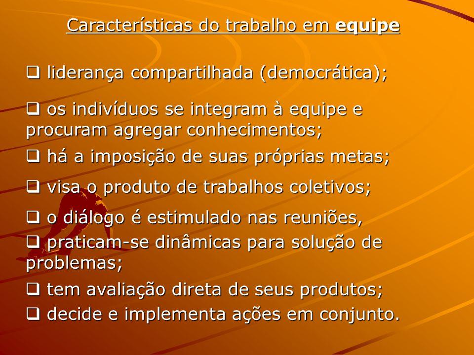 Características do trabalho em equipe