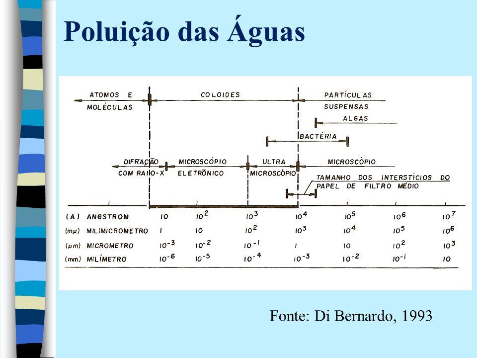 Poluição das Águas Fonte: Di Bernardo, 1993