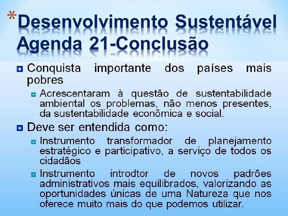 Desenvolvimento Sustentável Agenda 21-Conclusão