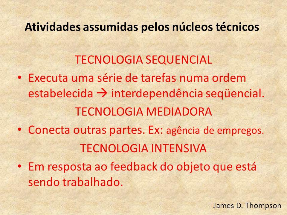 Atividades assumidas pelos núcleos técnicos