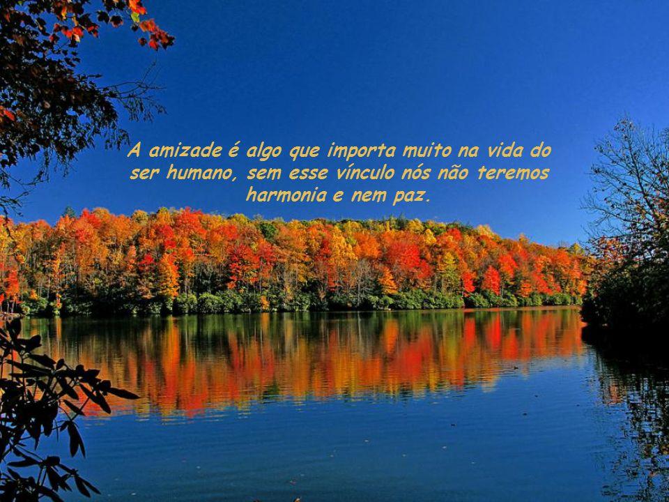 A amizade é algo que importa muito na vida do ser humano, sem esse vínculo nós não teremos harmonia e nem paz.