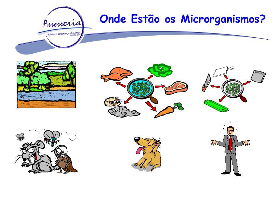 Onde Estão os Microrganismos