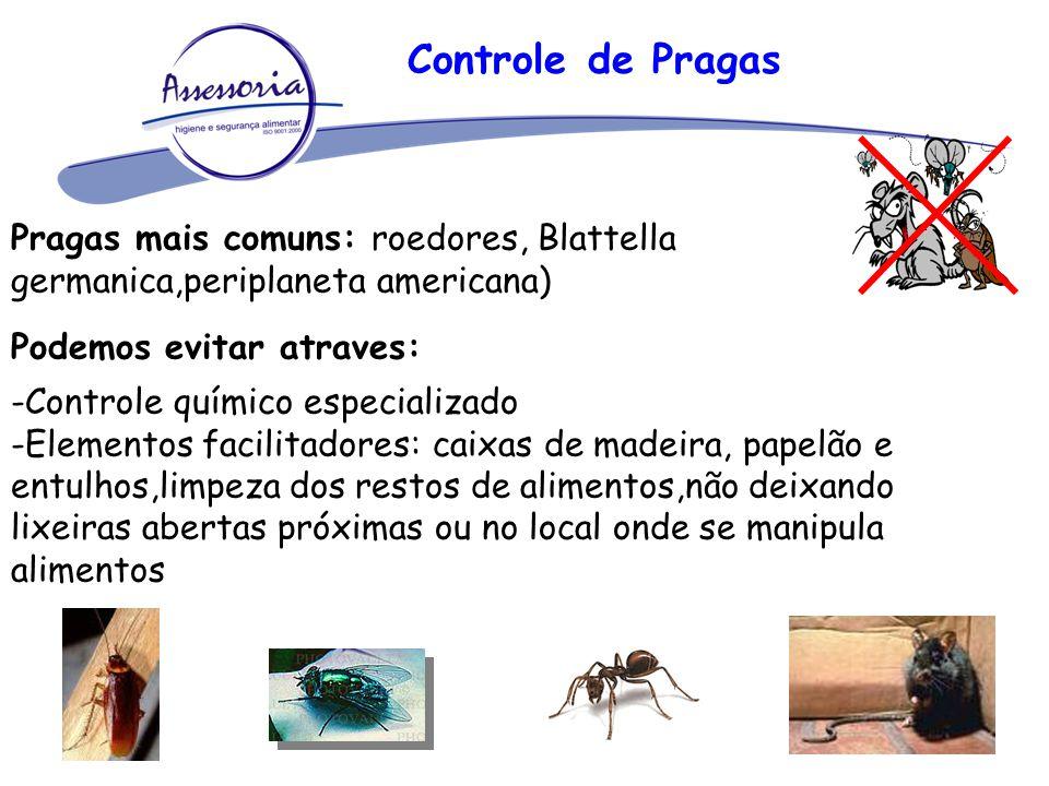 Controle de Pragas Pragas mais comuns: roedores, Blattella germanica,periplaneta americana) Podemos evitar atraves: