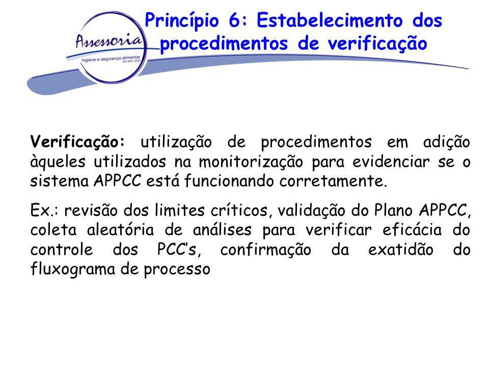 Princípio 6: Estabelecimento dos procedimentos de verificação