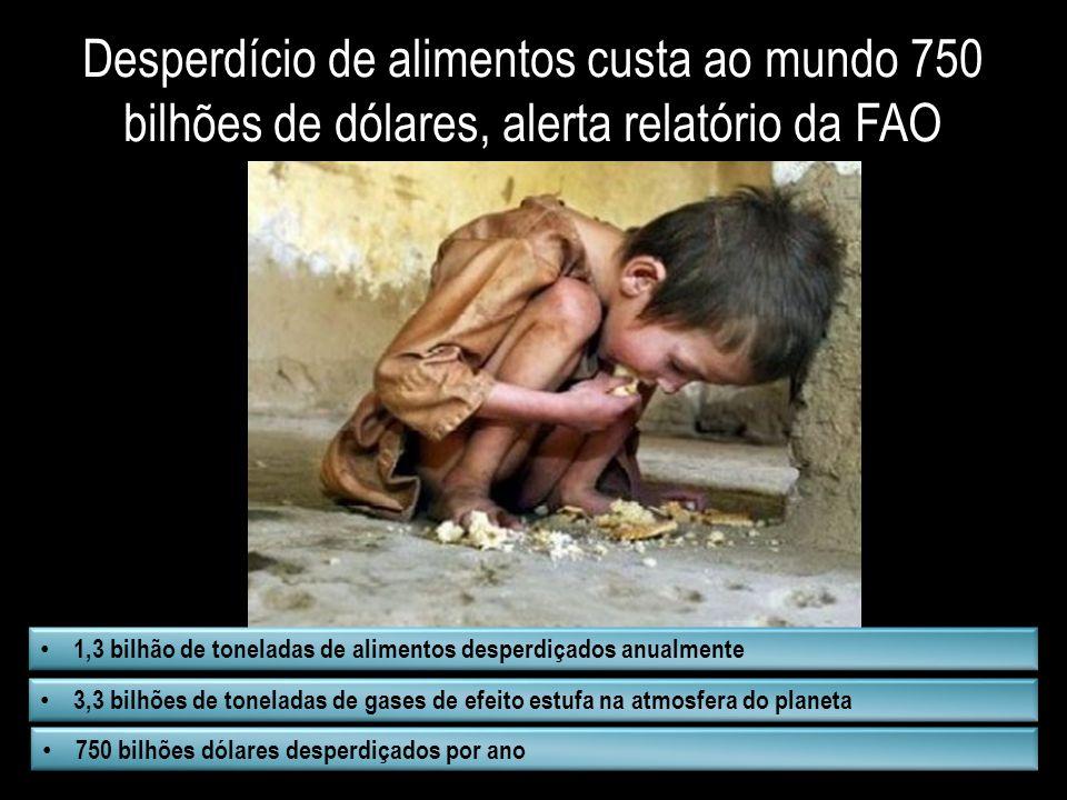 Desperdício de alimentos custa ao mundo 750 bilhões de dólares, alerta relatório da FAO
