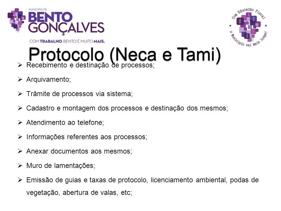 Protocolo (Neca e Tami)