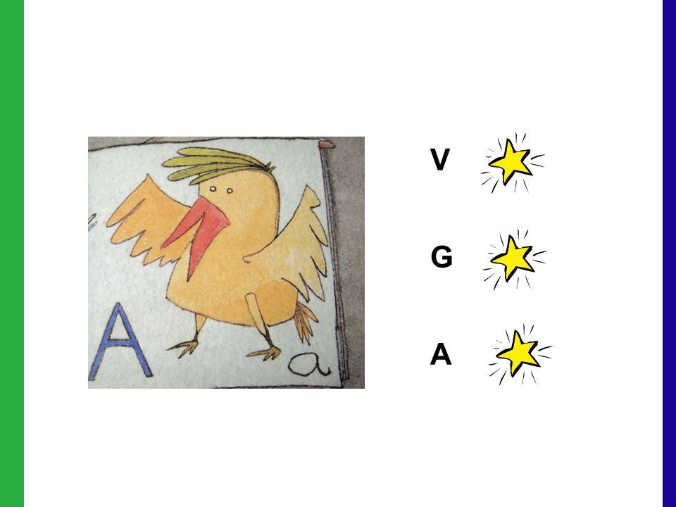 V G A