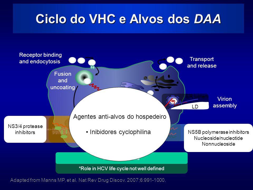 Ciclo do VHC e Alvos dos DAA