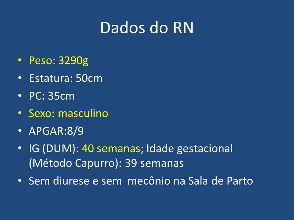 Dados do RN Peso: 3290g Estatura: 50cm PC: 35cm Sexo: masculino