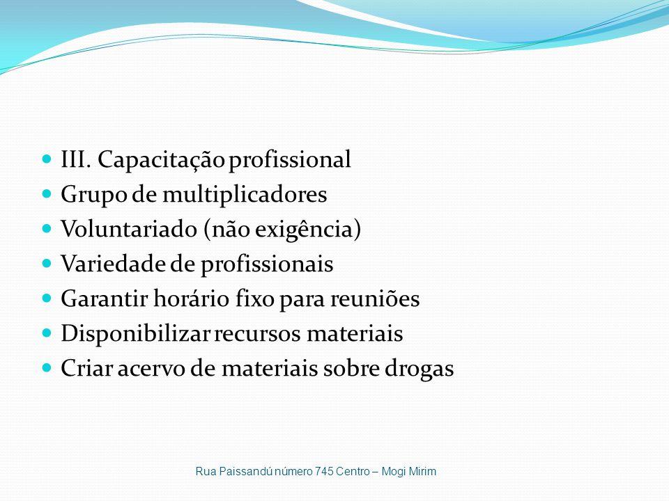 III. Capacitação profissional Grupo de multiplicadores