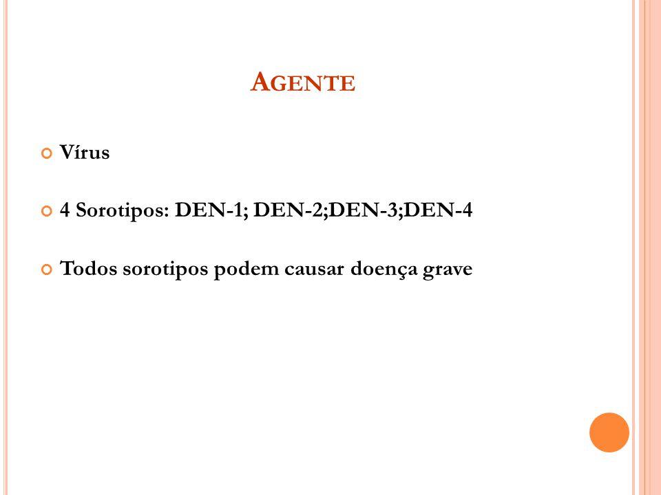 Agente Vírus 4 Sorotipos: DEN-1; DEN-2;DEN-3;DEN-4