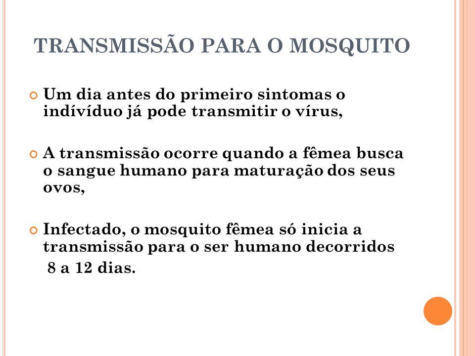 TRANSMISSÃO PARA O MOSQUITO