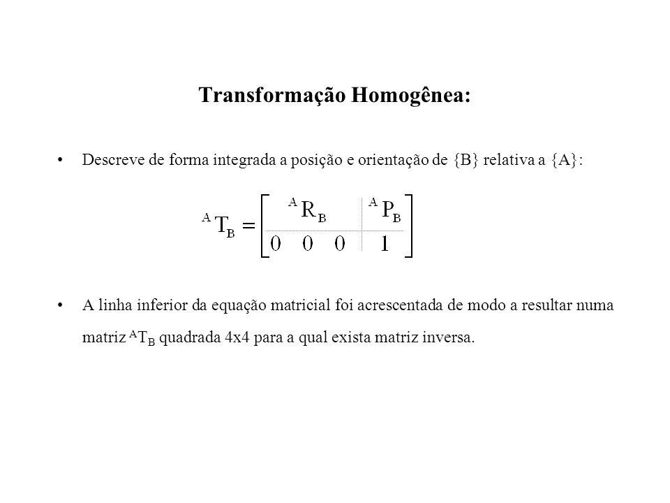 Transformação Homogênea: