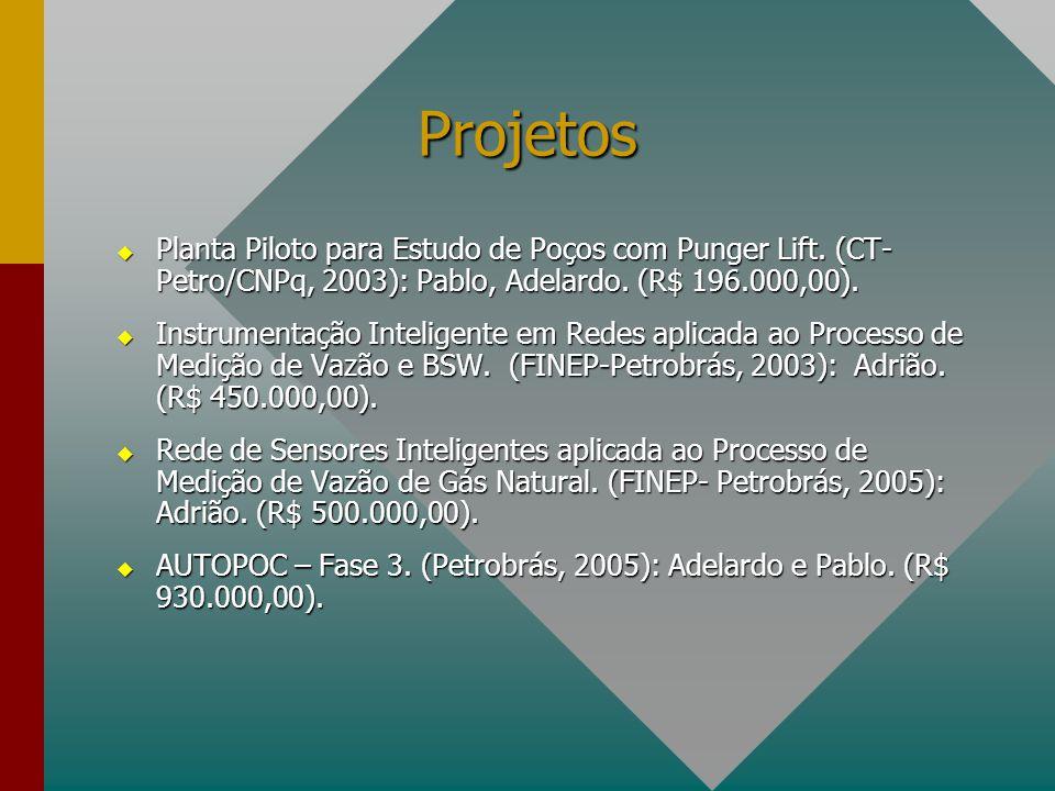 Projetos Planta Piloto para Estudo de Poços com Punger Lift. (CT- Petro/CNPq, 2003): Pablo, Adelardo. (R$ 196.000,00).