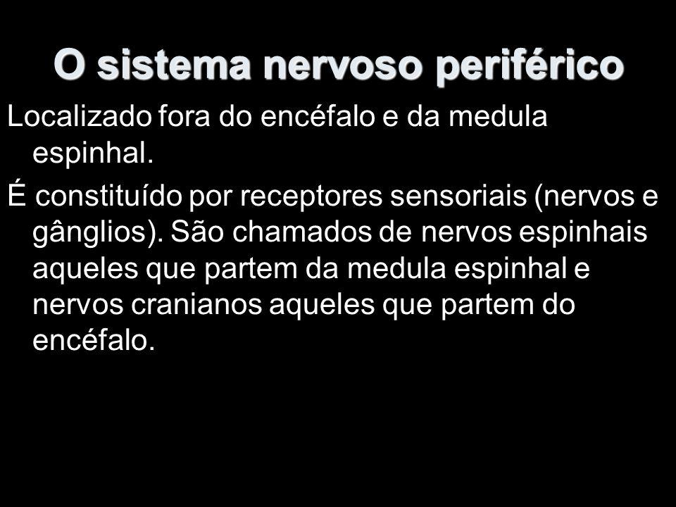 O sistema nervoso periférico