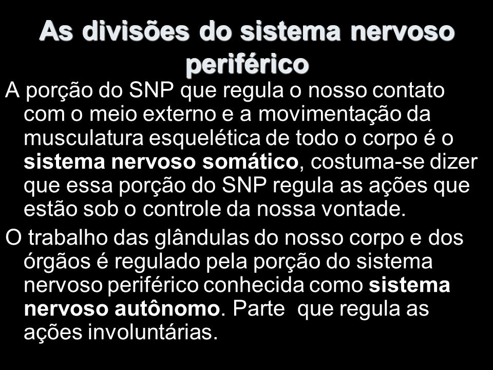 As divisões do sistema nervoso periférico