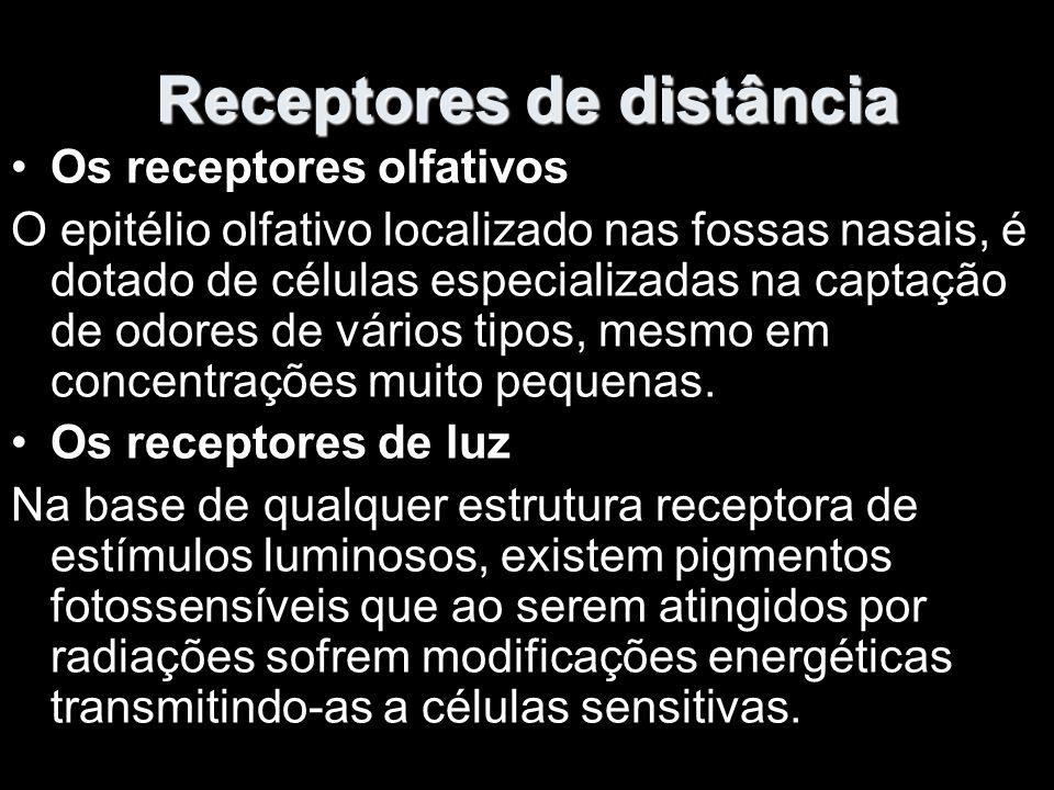 Receptores de distância
