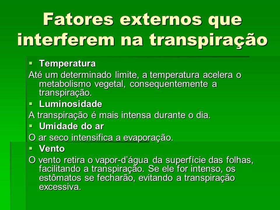 Fatores externos que interferem na transpiração