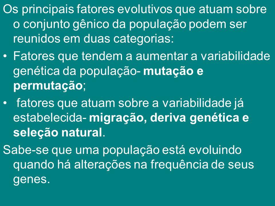 Os principais fatores evolutivos que atuam sobre o conjunto gênico da população podem ser reunidos em duas categorias: