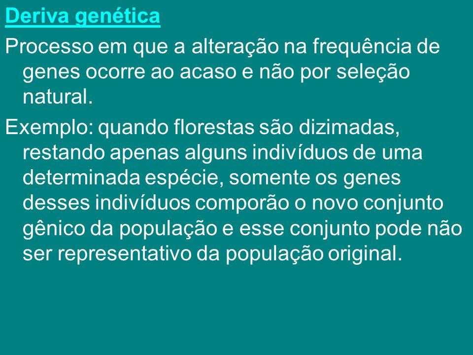 Deriva genética Processo em que a alteração na frequência de genes ocorre ao acaso e não por seleção natural.