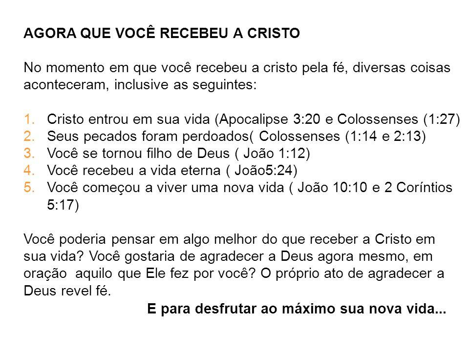AGORA QUE VOCÊ RECEBEU A CRISTO