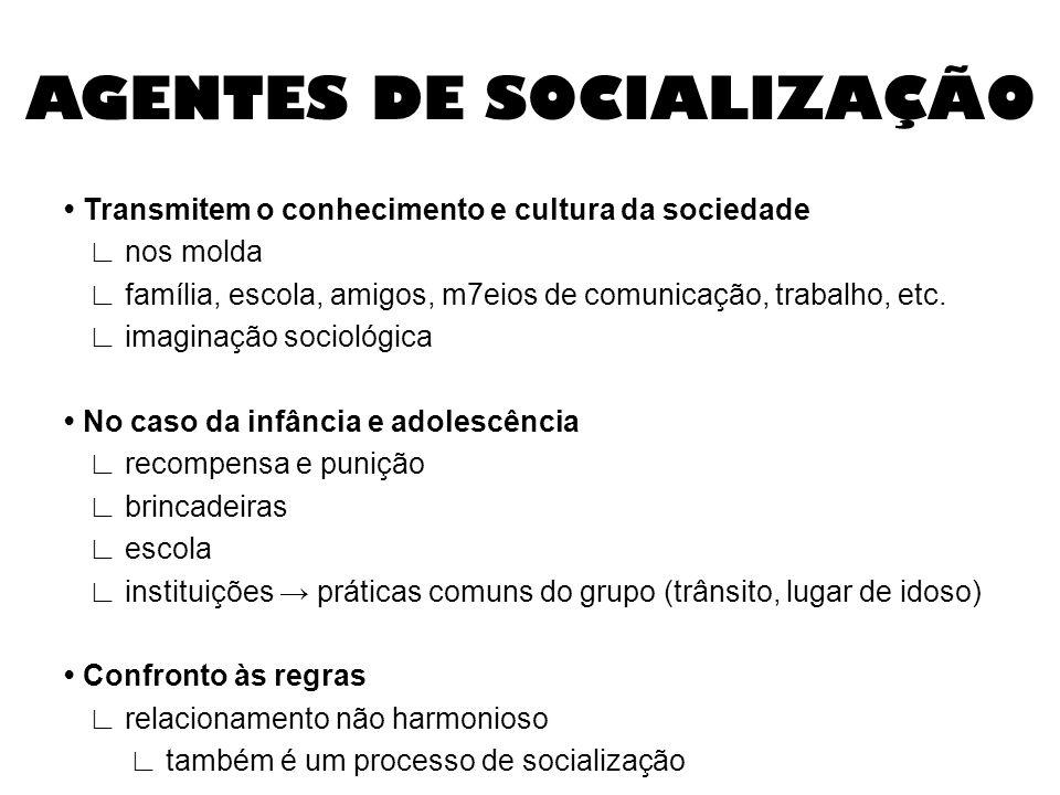 AGENTES DE SOCIALIZAÇÃO