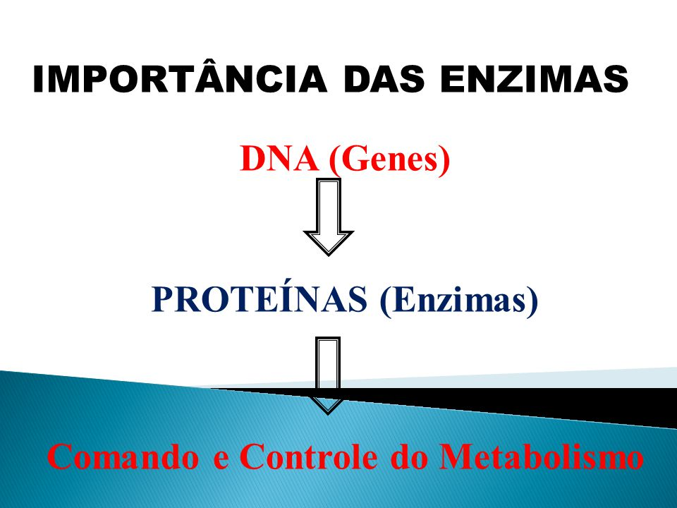 Comando e Controle do Metabolismo