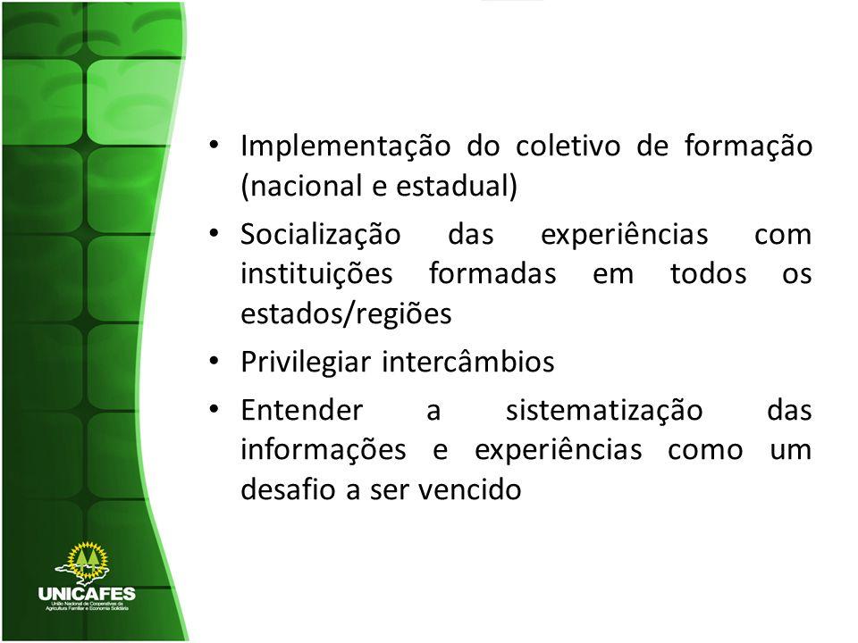 Implementação do coletivo de formação (nacional e estadual)