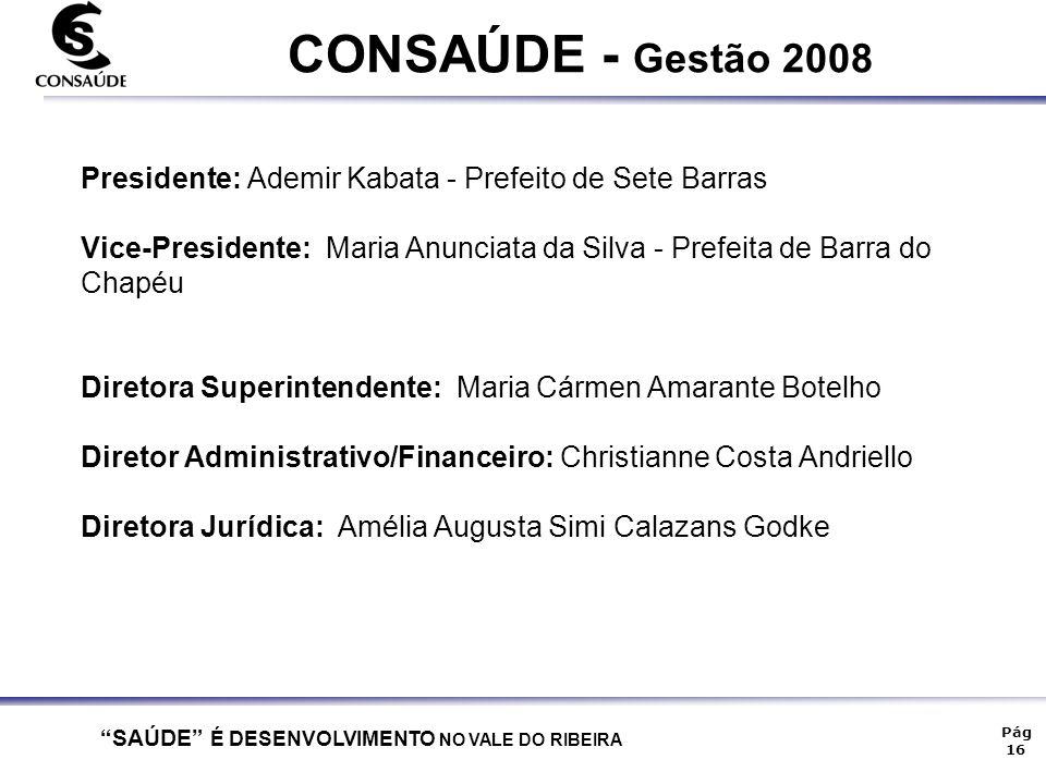 CONSAÚDE - Gestão 2008