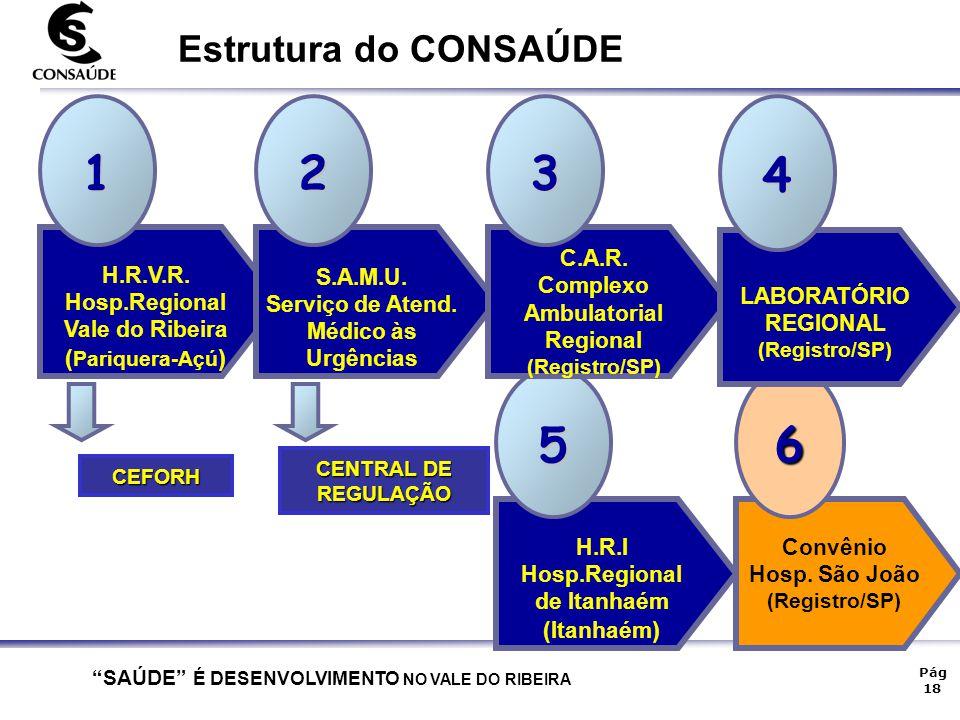 1 2 3 4 5 6 Estrutura do CONSAÚDE (Pariquera-Açú) H.R.V.R.