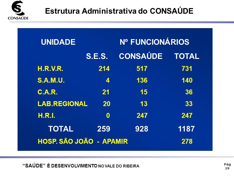 Estrutura Administrativa do CONSAÚDE