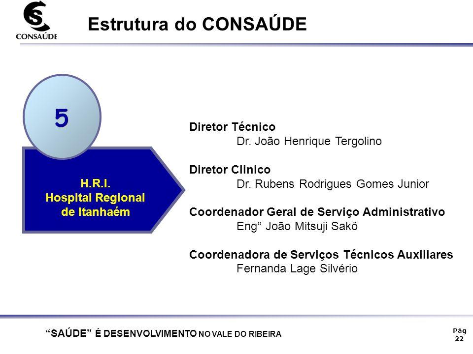 5 Estrutura do CONSAÚDE Diretor Técnico Dr. João Henrique Tergolino