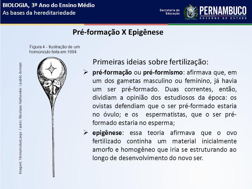 Pré-formação X Epigênese