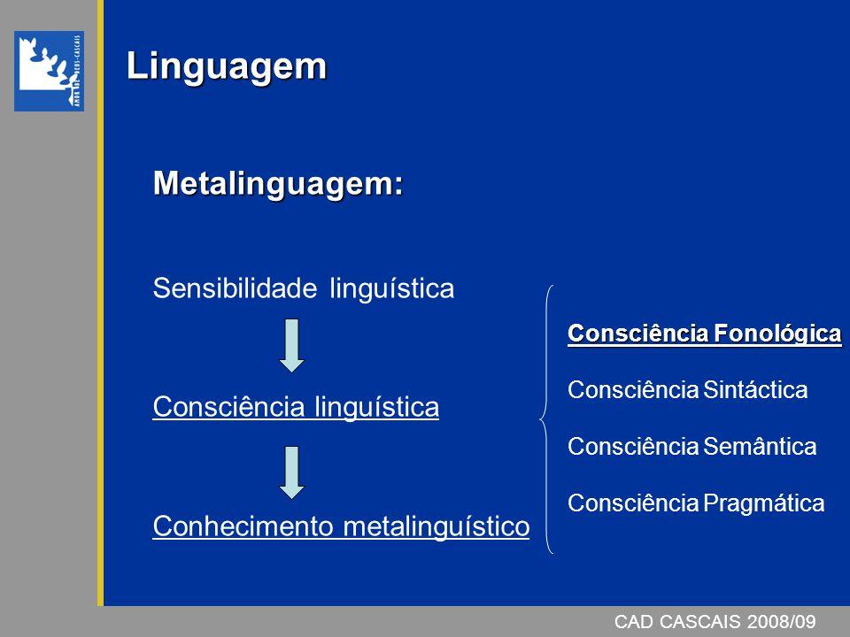 Linguagem Metalinguagem: Sensibilidade linguística