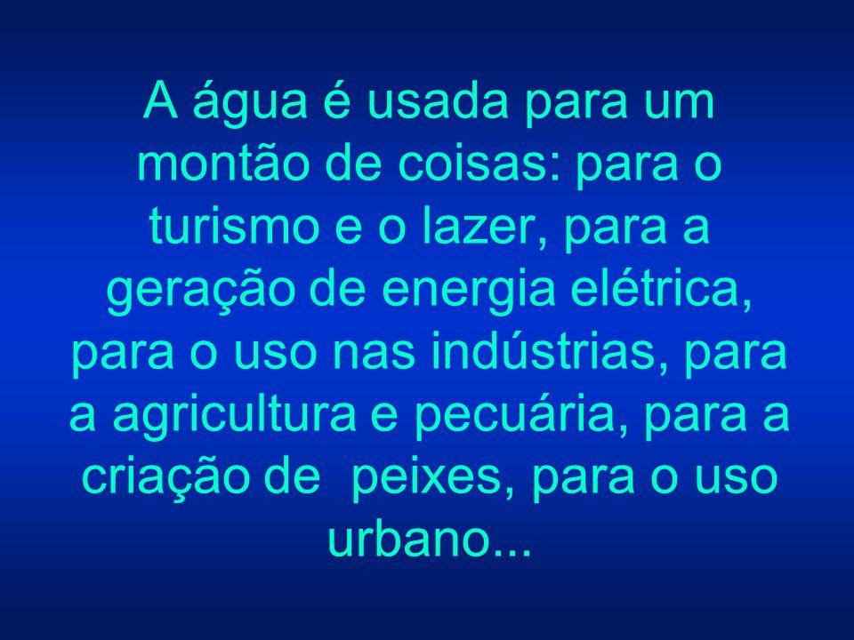 A água é usada para um montão de coisas: para o turismo e o lazer, para a geração de energia elétrica, para o uso nas indústrias, para a agricultura e pecuária, para a criação de peixes, para o uso urbano...