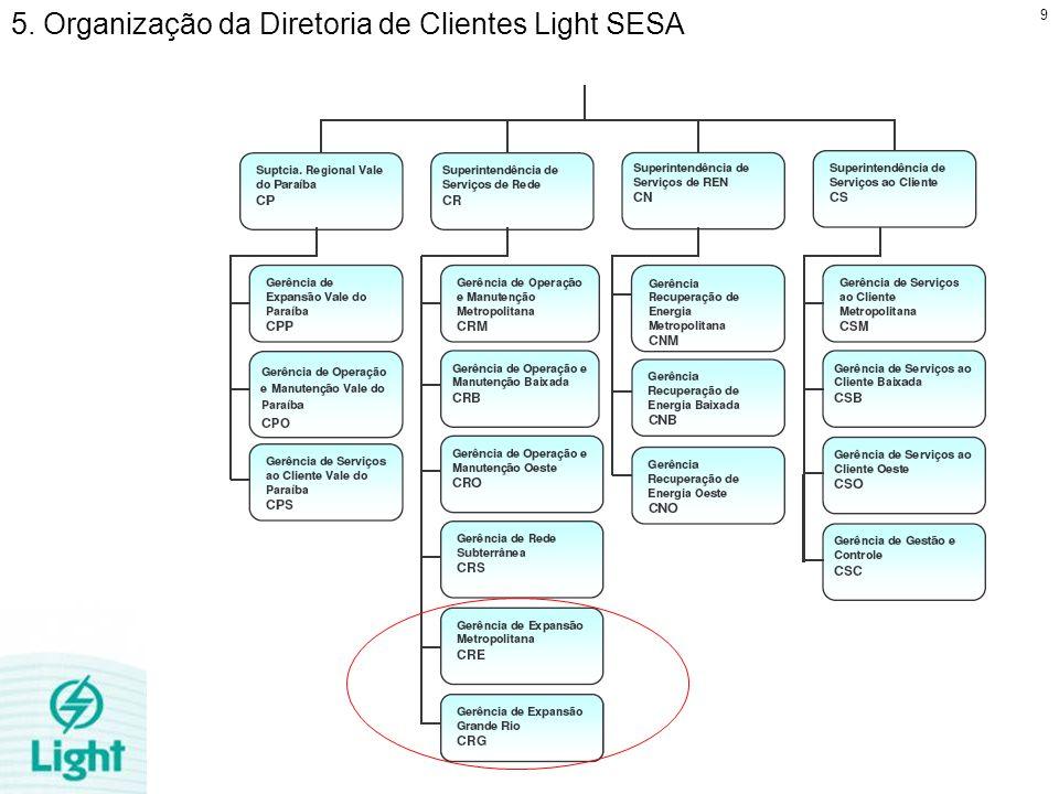5. Organização da Diretoria de Clientes Light SESA