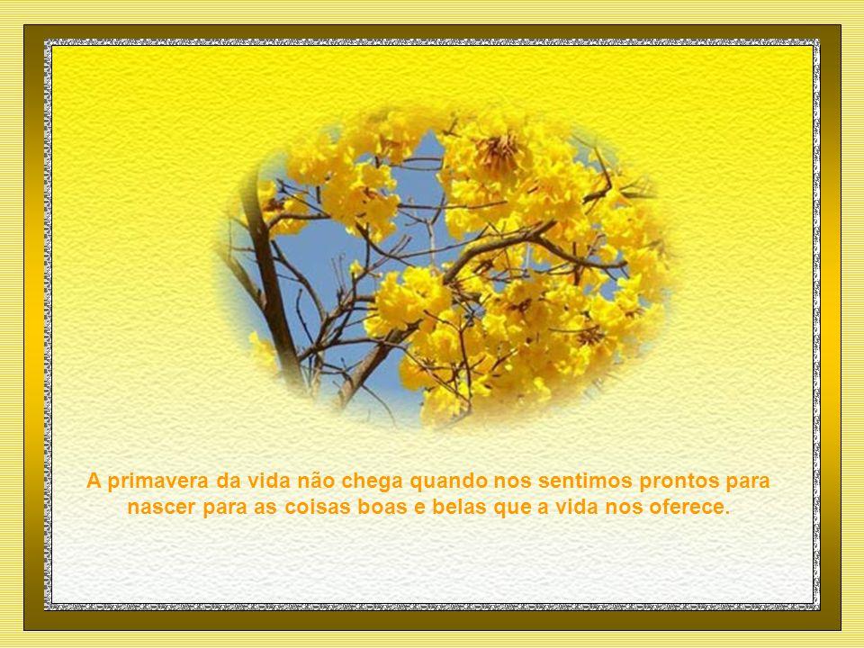 A primavera da vida não chega quando nos sentimos prontos para nascer para as coisas boas e belas que a vida nos oferece.
