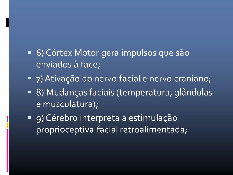 6) Córtex Motor gera impulsos que são enviados à face;